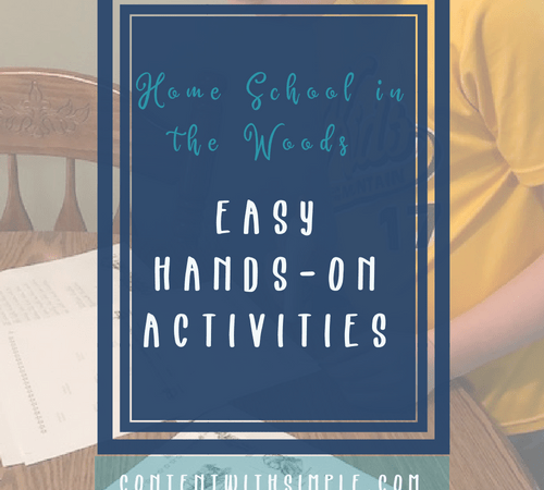 Easy Hands-On Activities Home School in the Woods Review