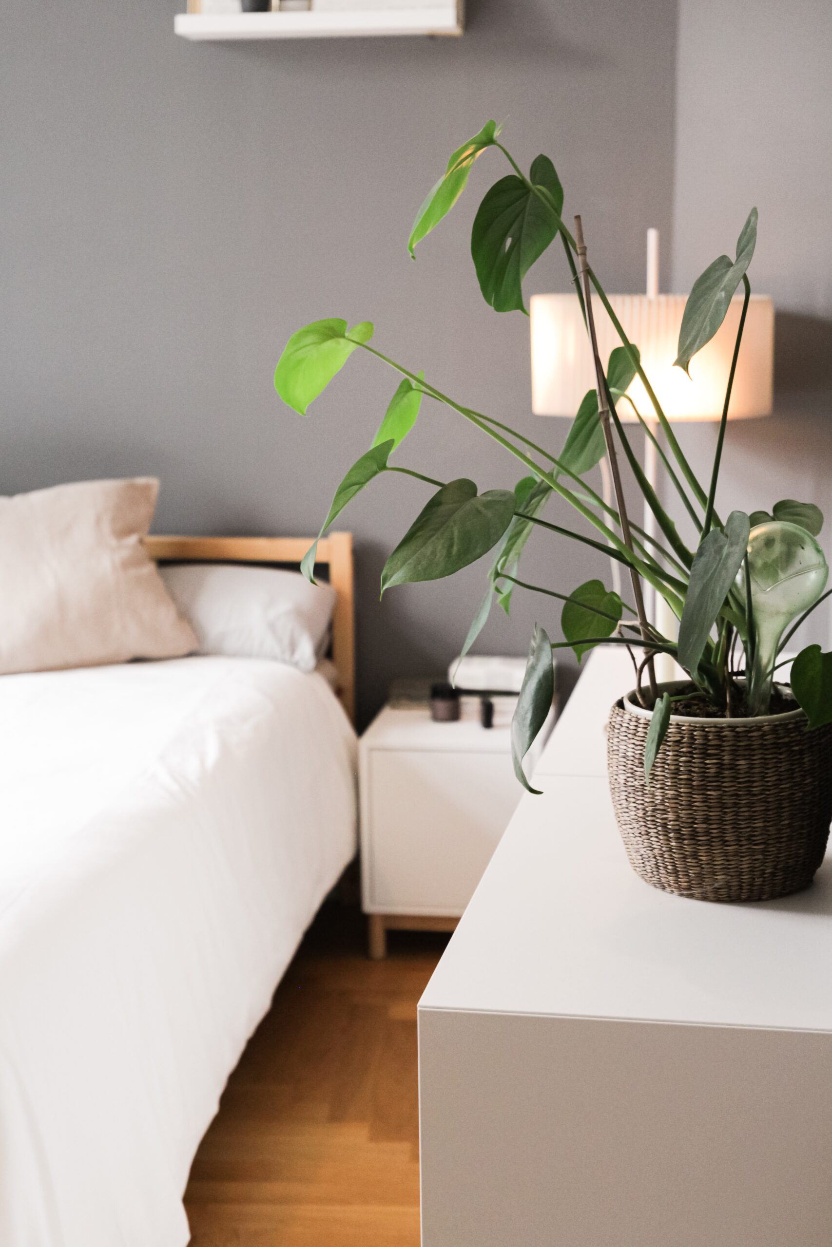 Personalise your room with fresh flowers