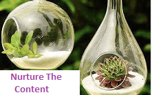 Useful Content for Website Grows Business