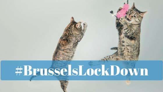 #BrusselsLockDown