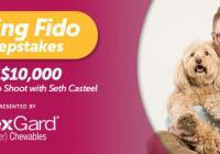 Z Living Channel Finding Fido Sweepstakes – Stand Chance to Win $10,000 and a Dog Photo Shoot with Seth Casteel