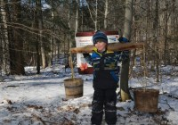 TRCA Sugarbush Maple Syrup Festival Contest - Chance To Win 1 of 3 Family Passes