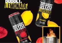 Anheuser-Busch Bud Light Seltzer Light Up The Night Sweepstakes
