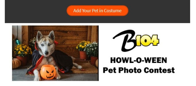Howl-O-Ween Pet Photo Contest