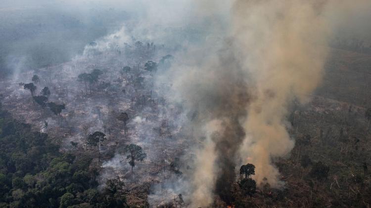 Queimada em Rondônia   - Getty Images - Getty Images