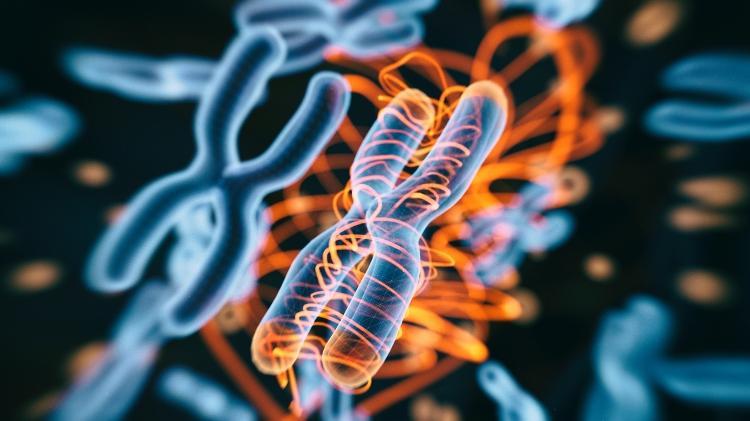 Genetic, Hereditary, Congenital Disease 2 - iStock - iStock