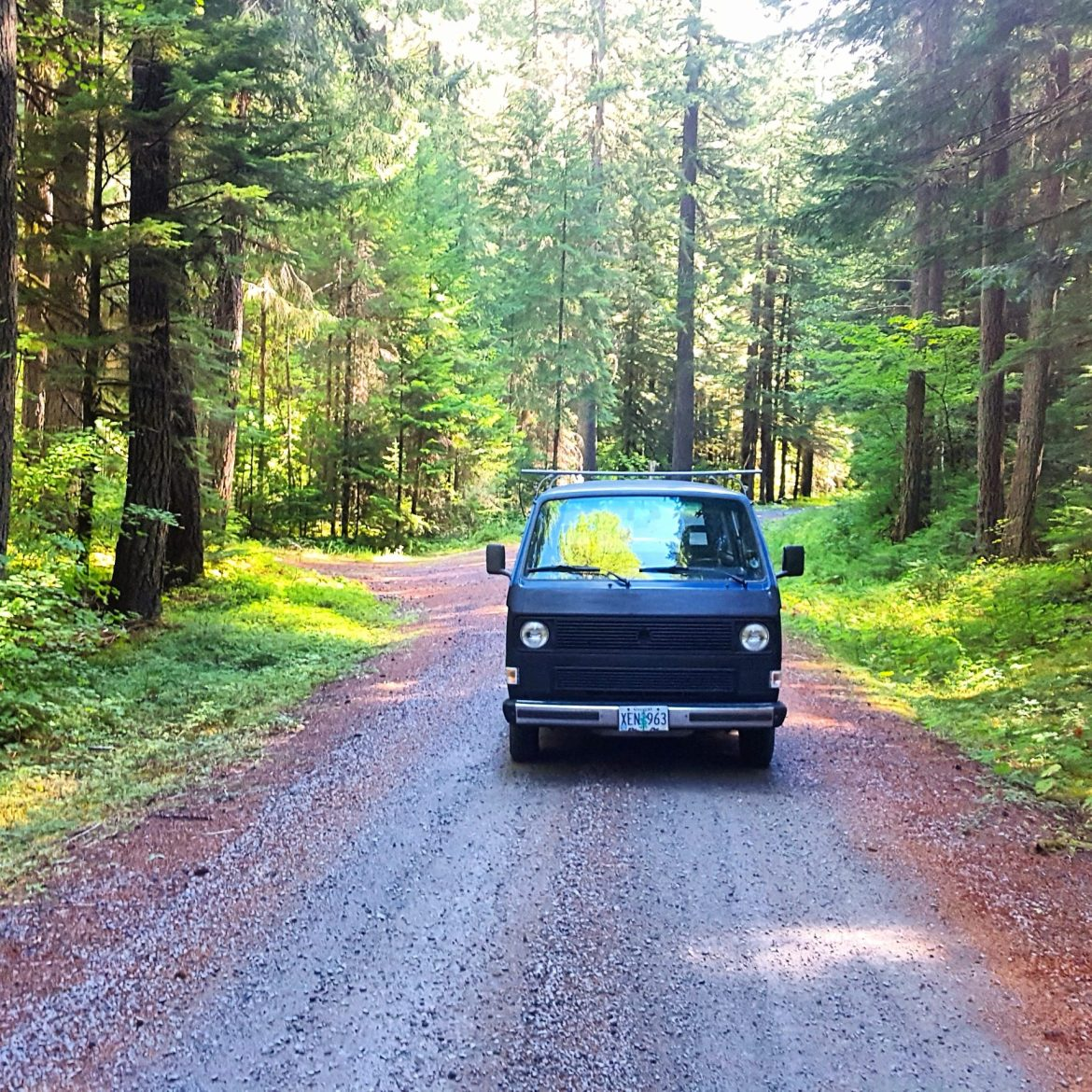 Vanagon on forest road