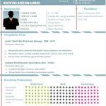 Contoh Resume Akauntan