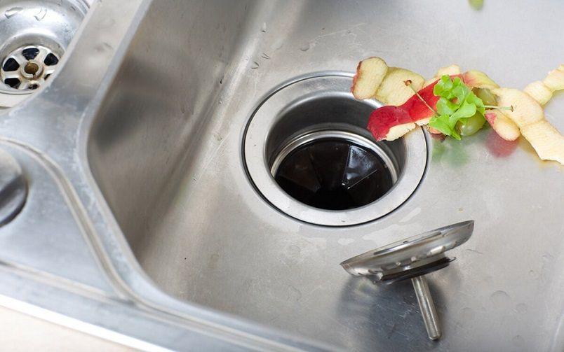 garbage disposal or kitchen sink backs