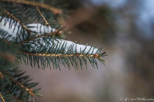 20140302-_MG_0107