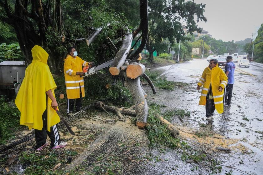 Afectaciones por el huracán Nora