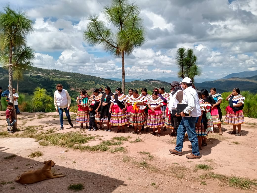 Consejo Indígena y Popular de Guerrero Emiliano Zapata (Cipog-EZ)
