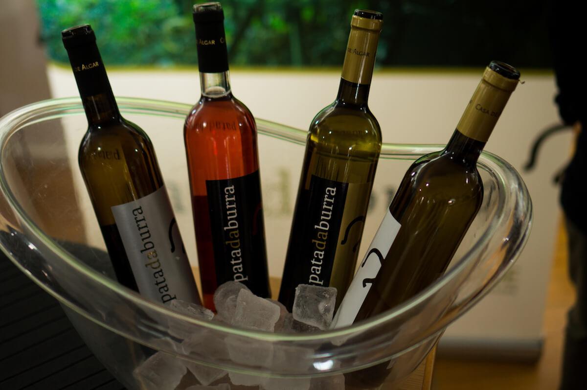 vinho de castelo de paiva