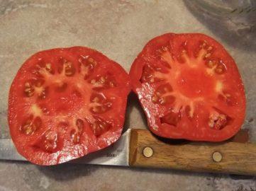 Chriss Greek Mama Tomato