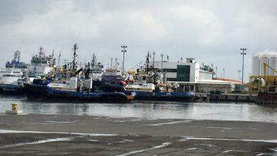 Photo of Destrucción ambiental solo por construir refinería de Dos Bocas