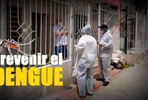 prevenir dengue