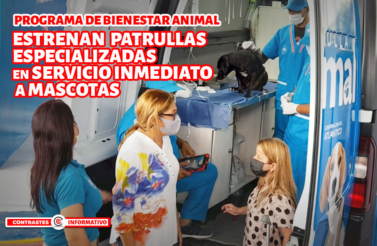 ambulancias mascotas