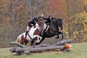 cavaliers qui sautent ensemble