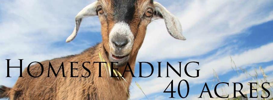 Homesteading_40_Acres