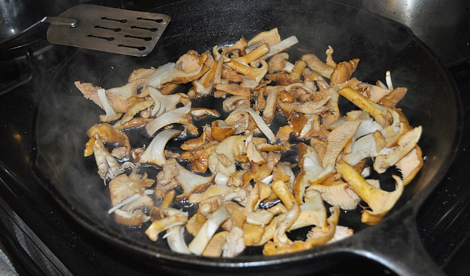 Mushrooms Among Us