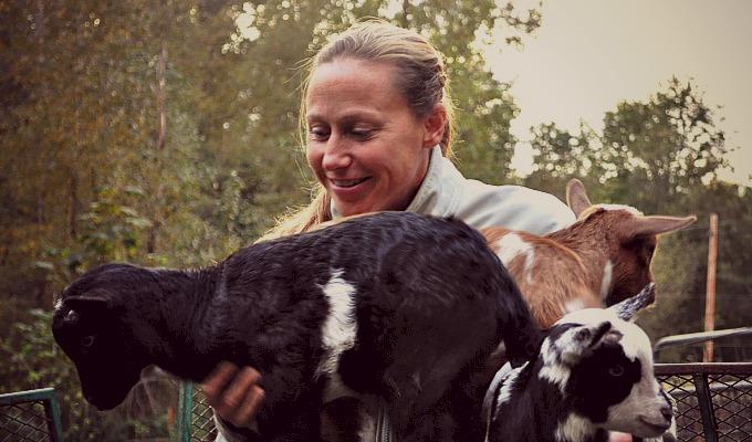 Goats Dusk