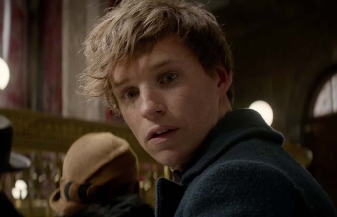 Fantastic Beasts and Where to Find Them newt scamander