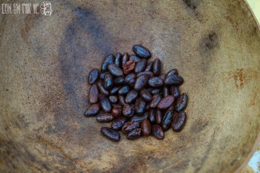 Cacao tostado
