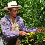 Fair Trade: It's More Than Just a Label