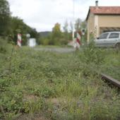 """Voie """"verte"""" à Cahors! Un contre-sens écologique et économiqueVoie """"verte"""" à Cahors! Un contre-sens écologique et économiqueRuraletv.fr"""