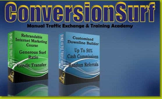 ConversionSurf background