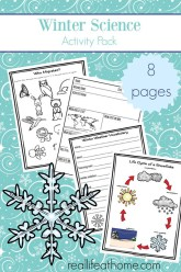 Winter Science Printables