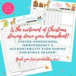 Homeschool productivity during christmas %283%29