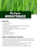 Wheatgrass printable