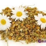 Remedio natural casero de como puedes curar el acné con manzanilla ecológica