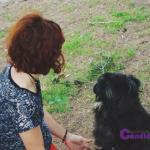 """Hoy en MISS Cándida, tenemos de invitada a Lansy del blog """"Más allá del arcoiris gris"""" hablándonos sobre """"Los perros deben ser nuestros compañeros"""""""
