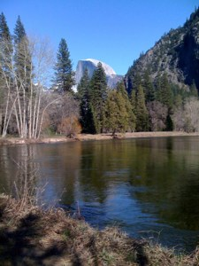 The Merced River from the valley floor.