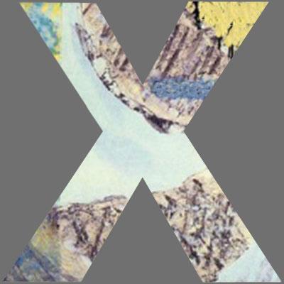 CoverX2049