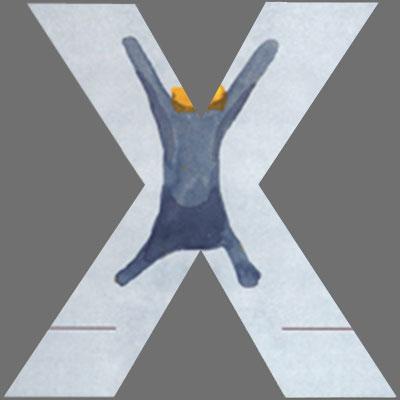 CoverX2147