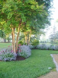 Beautiful Front Yard Landscaping Ideas 24