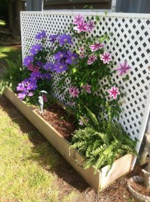 Best Ideas To Beautify Your Garden 26