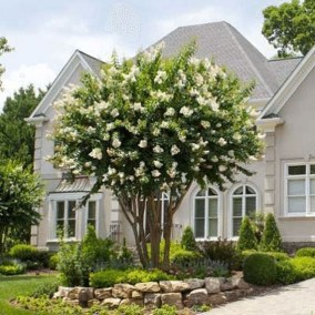 Stunning Front Yard Courtyard Landscaping Ideas 01