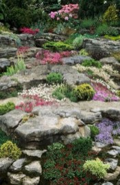 Fantastic Front Yard Rock Garden Ideas 21