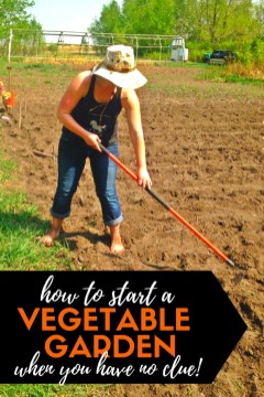 Best Ideas To Growing Vegetable Garden 14