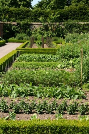 Fancy Garden Bed Borders Ideas For Vegetable And Flower 17