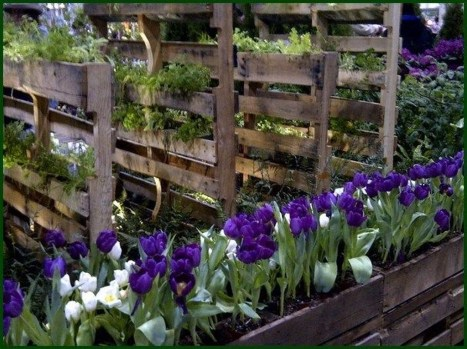 Fancy Garden Bed Borders Ideas For Vegetable And Flower 19