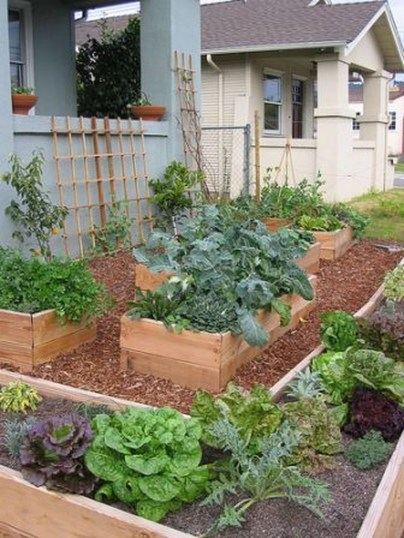 Fancy Garden Bed Borders Ideas For Vegetable And Flower 28