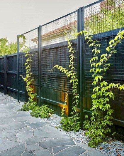Charming Privacy Fence Ideas For Gardens 37