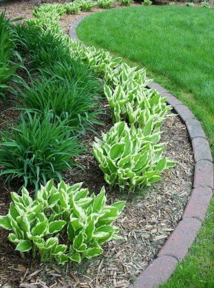 Impressive Small Front Yard Landscaping Ideas To Try 05