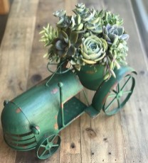 Awesome Succulent Garden Ideas In Your Backyard 09