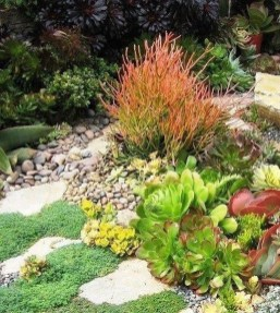 Awesome Succulent Garden Ideas In Your Backyard 20